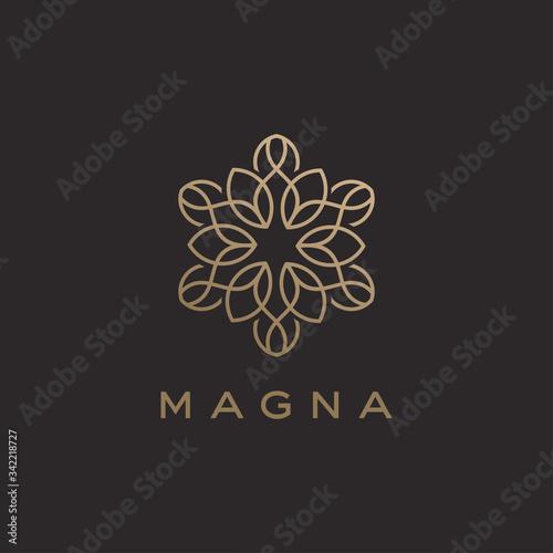 Fototapeta Abstract luxury linear trendy flower logo design template obraz