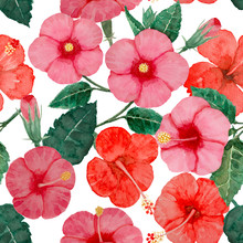 Watercolor Hand Painting Seamless Pattern, Red And Pink Hibiscus Flower Blossom, Green Leaves On White, Natural Tropical Plant Graphic And Vibrant Repeated Print Textile, Fabric, Vintage Wallpaper