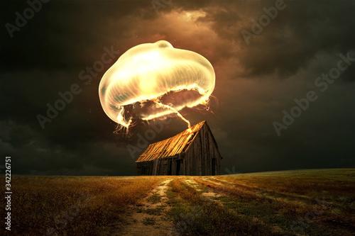 Fototapeta large jellyfish snatched the house obraz
