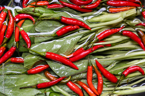 Fototapety, obrazy: Red chilli and kale in water