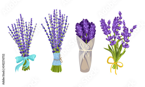 Obraz Lavender Floral Twigs Tied with Ribbon in Bunches and Wrapped in Paper Vector Set - fototapety do salonu