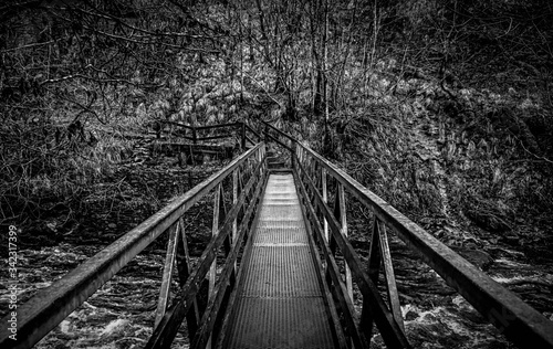 Canvas Print Footbridge Over River In Forest