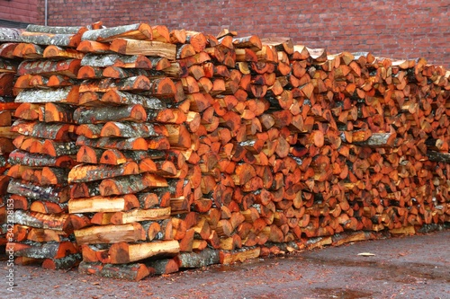 Wooden log piled up. Canvas-taulu