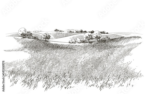 Photo Vector sketch Green grass field on small hills