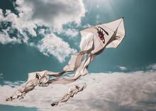 White Kites With Eyes Flying H...