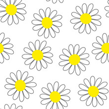 Camomile Seamless Vector Pattern. White Flowers With Yellow Centers Isolated On White Background. Flower Ornament. Cute Plant Illustration For Wallpaper, Wrapping Paper, Clothing, Prints, Packaging