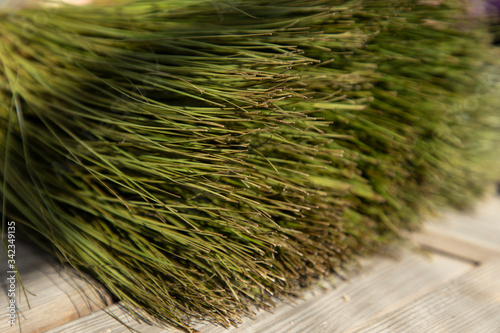 Photo Lush and airy green papyrus plant on a wooden table