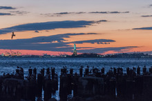 Birds Perching On Wooden Post By Sea With Statue Of Liberty In Background During Sunset
