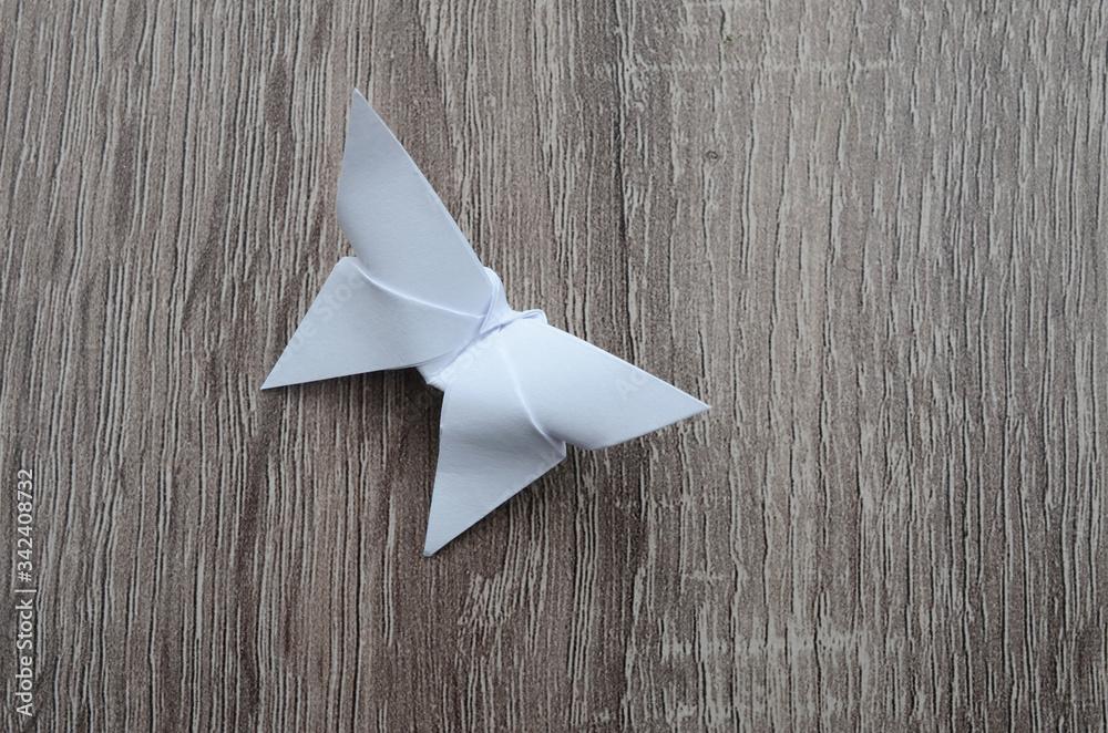 Fototapeta white origami butterfly