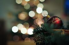 Low Angle Close-up Of Christmas Tree