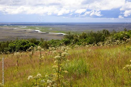 Skaftafell / Iceland - August 18, 2017: Landscape at Skaftafell National Park, I Canvas Print