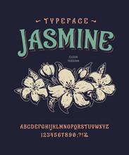 Font Jasmine. Vintage Typeface...