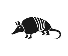 Design Of Armadillo Flat Icon