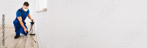 Obraz Worker Spraying Pesticide At Home - fototapety do salonu