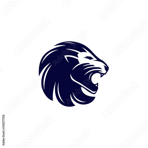 Fototapety, obrazy: Lion head vector illustration