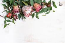 Beautiful Pink King Protea Sur...