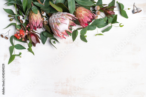 Beautiful pink king protea surrounded by  pink ice proteas, leucadendrons, eucalyptus leaves and flowering gum nuts, creating a floral border on a rustic white background Canvas Print