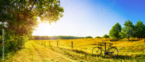 Landscape in summer with trees and meadows in bright sunshine Canvas
