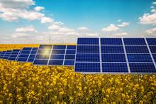 Solar Panels In The Rape Field