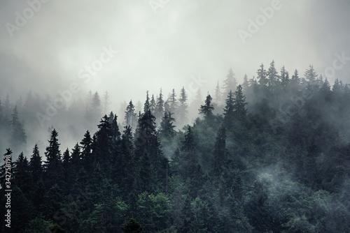 Misty mountain landscape Fototapeta