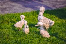Ceramic Duck Decor - Chiang Mai Thailand March 2020