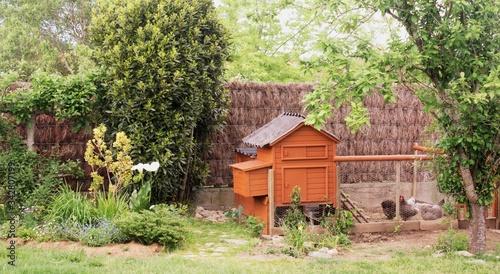 Canvastavla poulailler , enclos ,poules dans le jardin