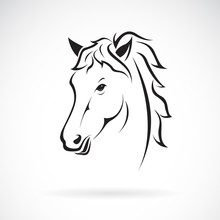 Vector Of A Horse Head Design....