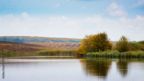 River with trees ashore and field in the distance, trees reflected in clear rive Canvas Print