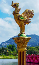 Row Of Golden Rooster Statues ...