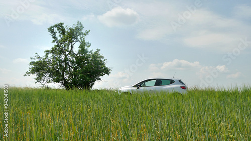 Photo A silver car in the middle of grass next to green tree