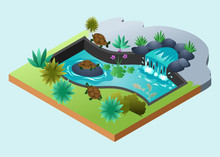 Isometric Vector Illustration Representing A Turtle Pond With Waterfall And Gold Fish