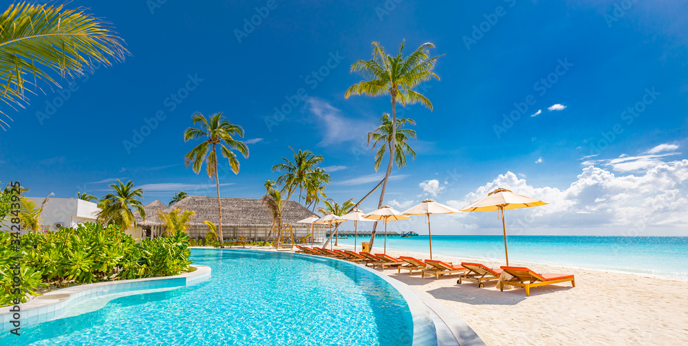 Fototapeta Outdoor tourism landscape. Luxurious beach resort with swimming pool and beach chairs or loungers under umbrellas with palm trees and blue sky. Summer travel and vacation background concept