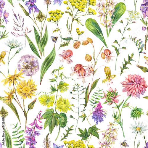 Leinwandbilder - Watercolor summer meadow flowers, wildflowers seamless pattern.