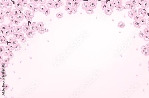 Hand drawn spring sakura, flowers, blooming tree branches, petals, floral elements and bokeh with copy space. Decorative sketch illustration banner on light pink background for design card, invitation © Diana Kovach