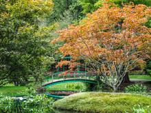 Beautiful Green Bridge Reflect...