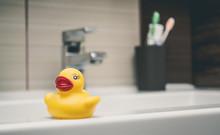 Rubber Duck On Bathtub