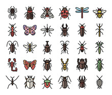 Insect Color Outline Vector Ic...