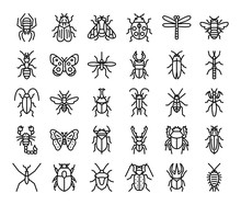 Insect Outline Vector Icons