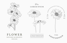 Black Flower Logo Collection W...