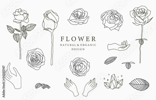 Obraz Black flower logo collection with leaves,geometric.Vector illustration for icon,logo,sticker,printable and tattoo - fototapety do salonu