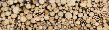 Round Teak Wood Stump Background