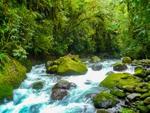 La Paz Waterfall Gardens Natur...