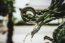 Close-up Of A Dragon