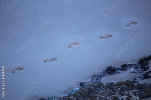 High Angle View Of Footprints On Snowfield Tablou Canvas