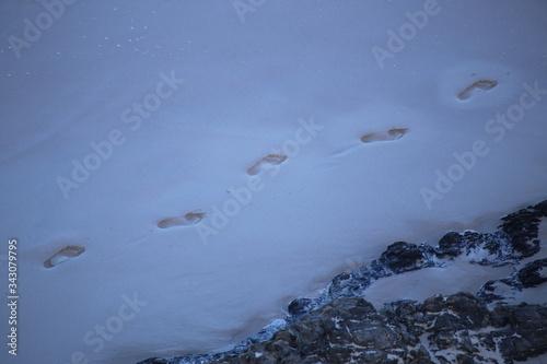 Valokuvatapetti High Angle View Of Footprints On Snowfield