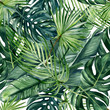 canvas print picture - Watercolor hand painted seamless pattern with green tropical leaves of monstera, banana tree and palm on white  background.