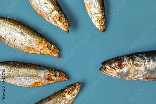 A group of smoked small fish with their mouths open in front of one large fish on a blue background Canvas Print