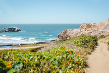 View From Sutro Baths Upper Tr...