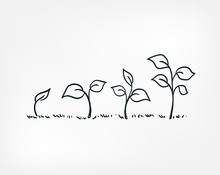 Plant Growing Line Art Doodle ...