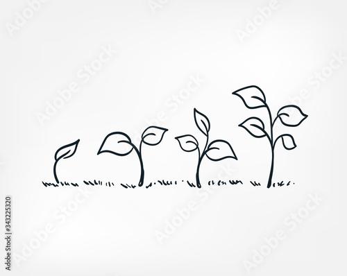plant growing line art doodle vector symbol sign concept Poster Mural XXL